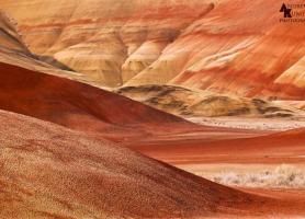 چشم انداز سورئال در تپه