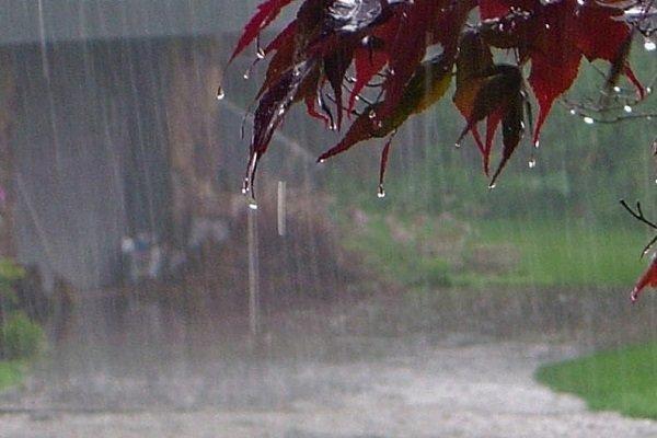 بارش ها در البرز اسیدی نیست