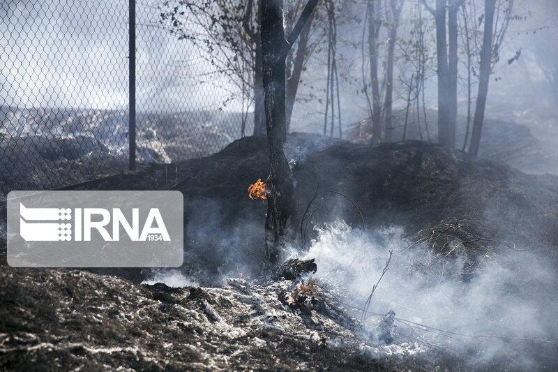 خبرنگاران کوشش نیروهای مردمی برای مهار آتش در جنگل های بهمئی ادامه دارد