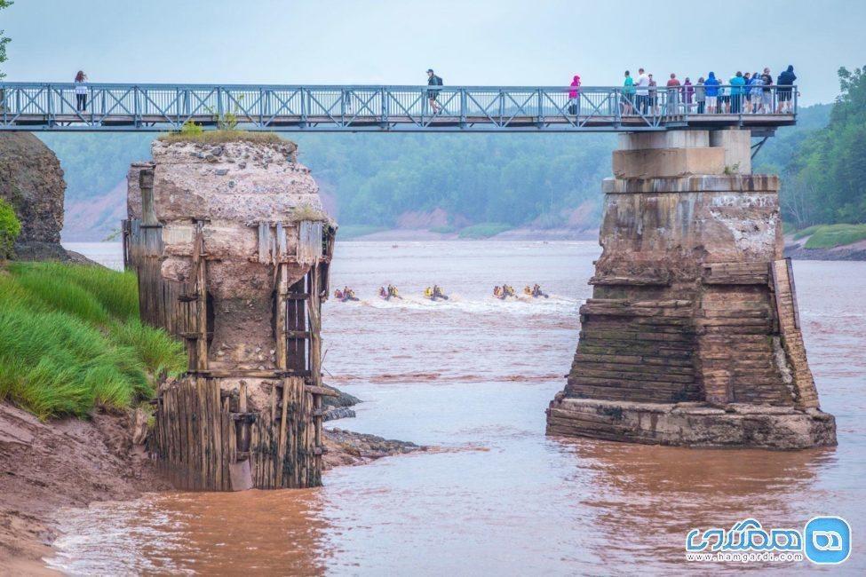 قایق رانی در آب های کم عمق رودخانه ، خارق العاده ترین سواریِ جهان
