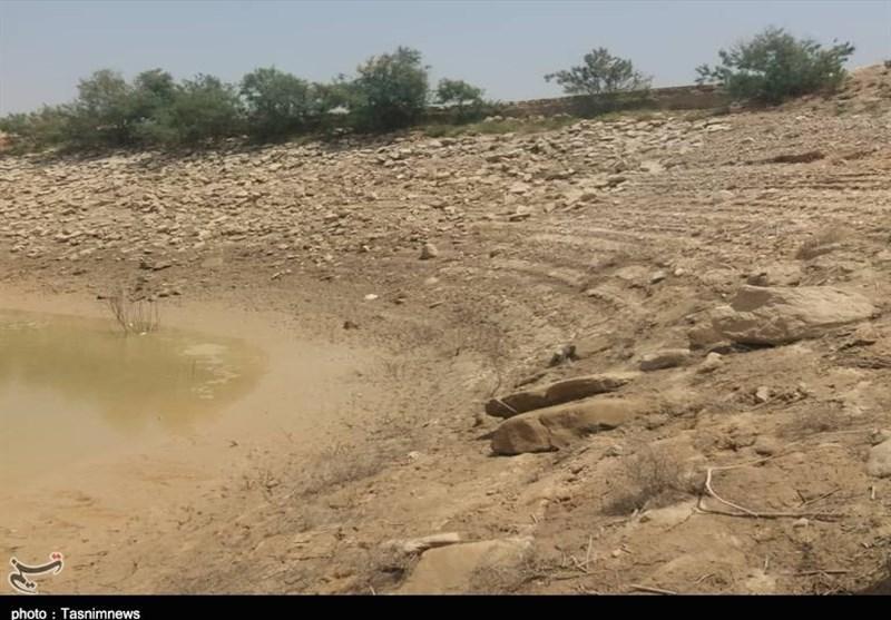 8 نکته درباره اهمیت خاک