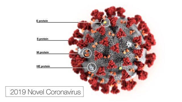 شایع ترین علامت بیماری کرونا ویروس، در ابتدا تب و سپس مسائل ریوی است