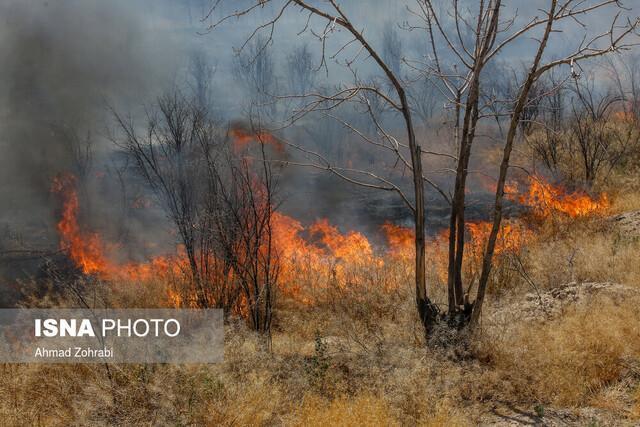 مرگ 3 نفر در جریان اطفای آتش بوزین و مره خیل در کرمانشاه