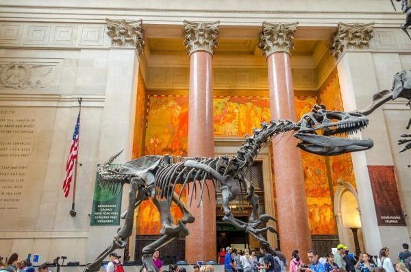 مقاله: موزه تاریخ طبیعی آمریکا، نیویورک
