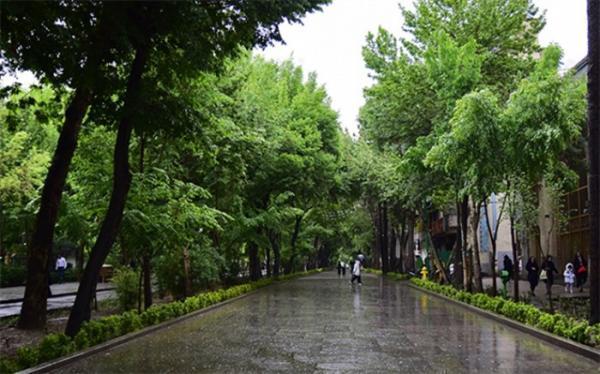 بارش پراکنده در بعضی از استان های شمالی