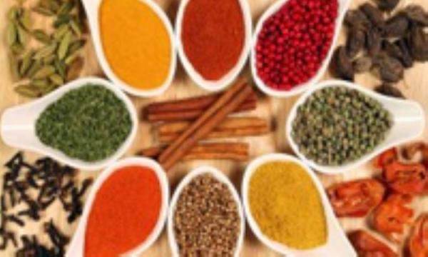 گیاهان شفابخش در طب سنتی
